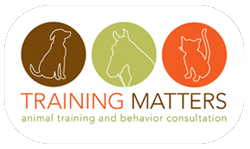 Training Matters Logo